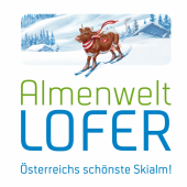 Ski area Almenwelt Lofer